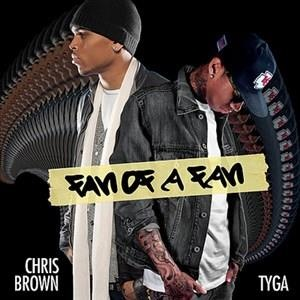 Альбом: Chris Brown - Fan of a Fan