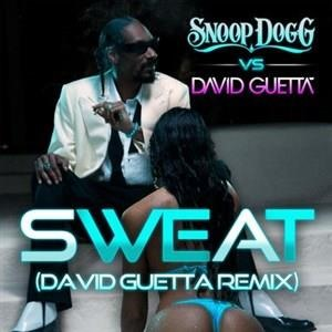 Альбом David Guetta - Sweat/Wet