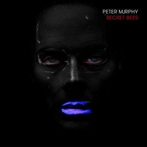Альбом: Peter Murphy - The Secret Bees of Ninth