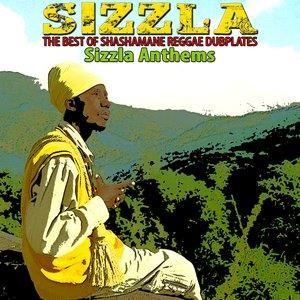 Альбом Sizzla - The Best of Shashamane Reggae Dubplates