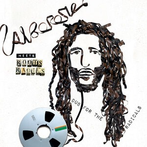 Альбом Alborosie - Alborosie Meets Roots Radics: Dub For The Radicals