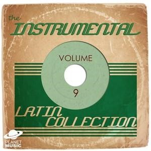 Альбом: Shakira - The Instrumental Latin Collection, Vol. 9