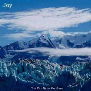 Альбом Joy - You Can Never Go Home