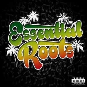Альбом: Tarrus Riley - Essential Roots