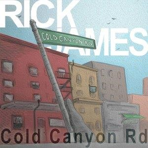 Альбом: Rick James - Cold Canyon Road