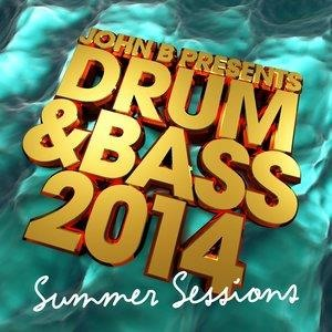 Альбом Camo & Krooked - Drum & Bass 2014: Summer Sessions