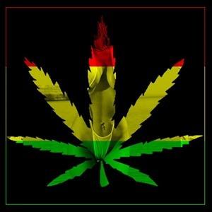 Клип песни про коноплю снуп дог о марихуане