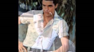 Смотреть клип песни: Elvis Presley - Just for Old Times Sake