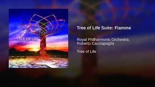 Клип Royal Philharmonic Orchestra London - Tree of Life Suite: Fiamme