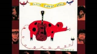 Клип Elvin Bishop - How Much More