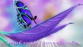 Клип Ernesto Cortázar - To Become A Butterfly