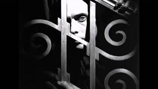 Peter Murphy - Just For Love
