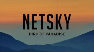 Клип Netsky - Bird of Paradise